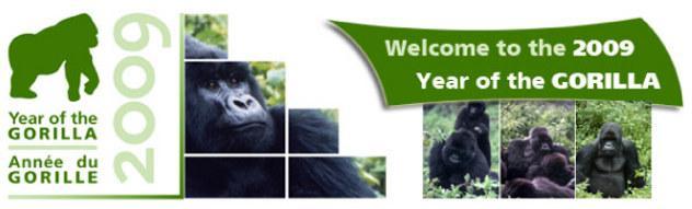 gorilla_wf_banner
